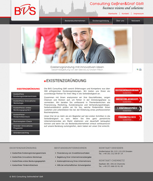 Webdesign BVS-Consulting…